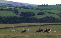 骑马休闲旅游